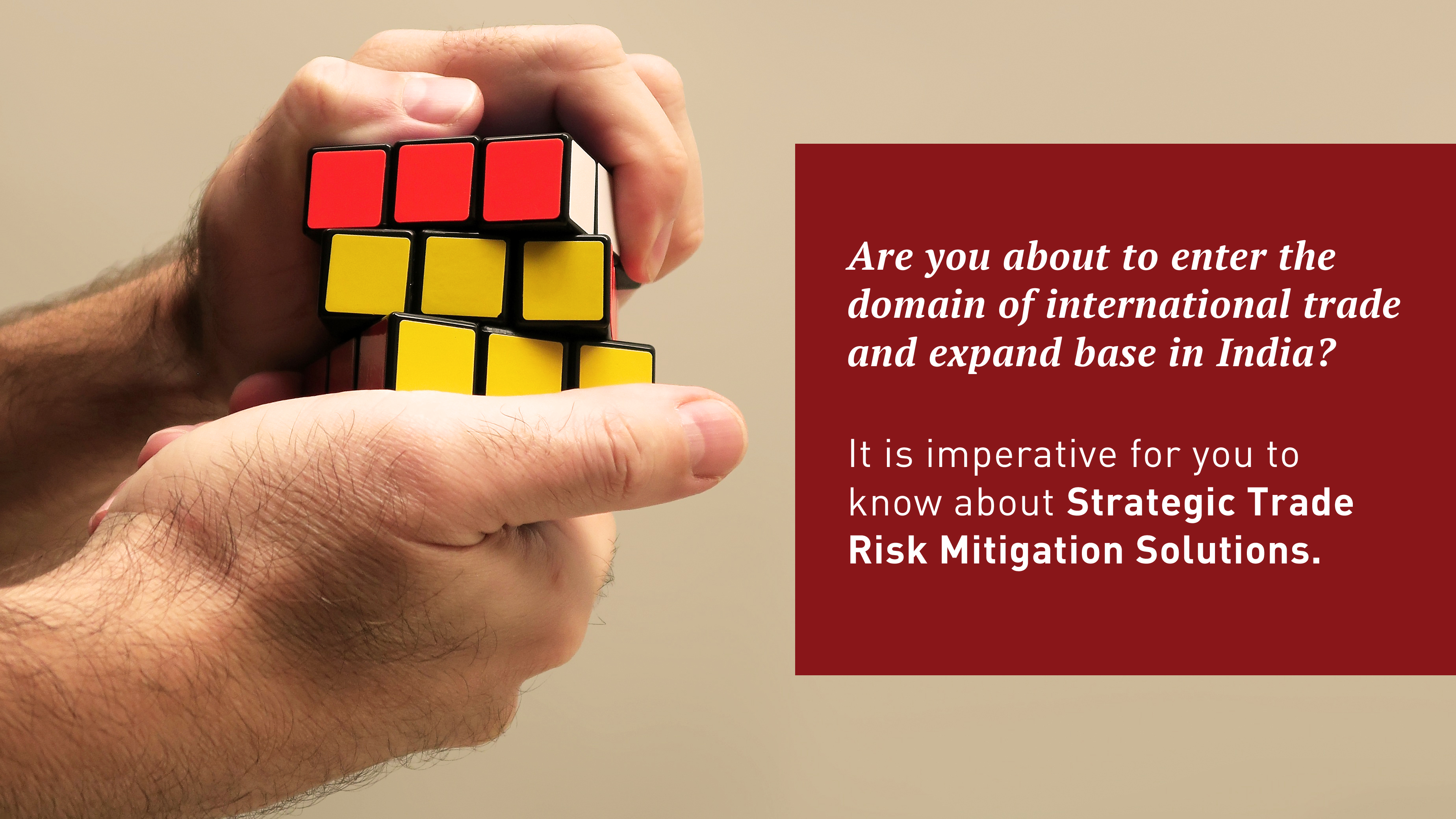 Strategic Trade Risk Mitigation Solutions